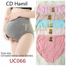 CD HAMIL UC066  large
